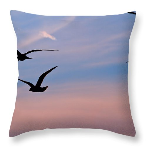 Seagulls Throw Pillow featuring the photograph Gulls At Dusk by Karol Livote