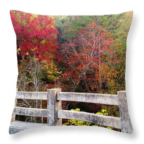 Gunner Pool Throw Pillow featuring the photograph Gunner Bridge by Kevin Pugh