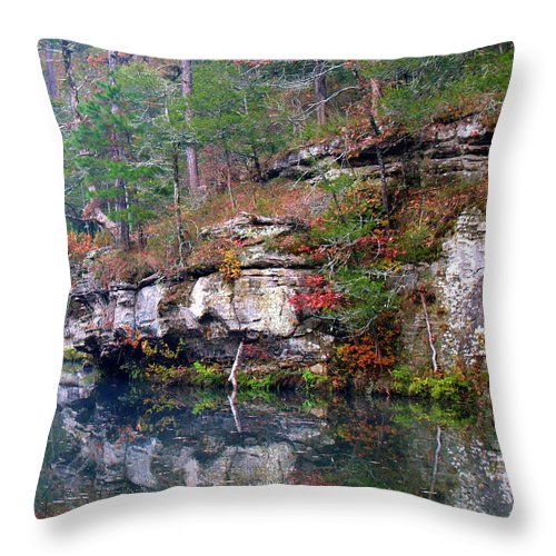 Gunner Pool Throw Pillow featuring the photograph Gunner Reflections by Kevin Pugh