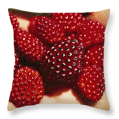 Plants Throw Pillow featuring the photograph Handful Of Salmonberries Rubus by Rich Reid