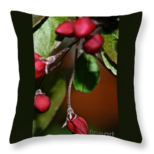 Plant Throw Pillow featuring the photograph Hanging By A Stem by Susan Herber