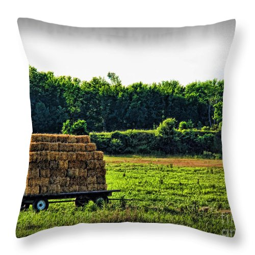 Hay Throw Pillow featuring the photograph Hay Ride by Joan Minchak