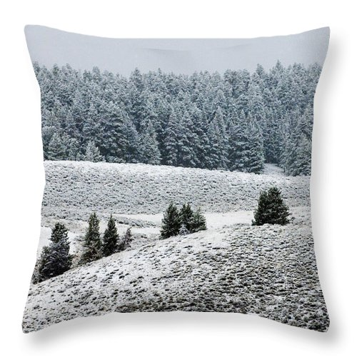 Landscape Throw Pillow featuring the photograph Hayden Valley Storm by Sandra Bronstein