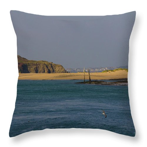 Cornwall Throw Pillow featuring the photograph Hayle Harbour by Brian Roscorla