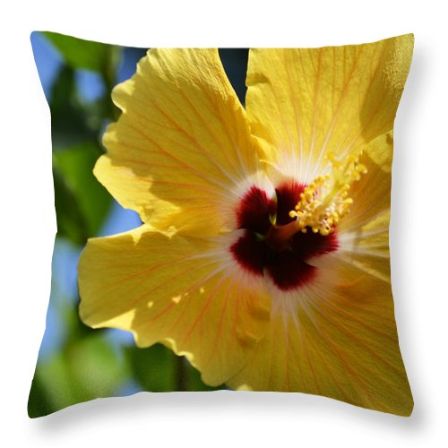 Hibiscus Throw Pillow featuring the photograph Hello Yellow by Melanie Moraga