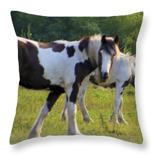 Wisconsin Throw Pillow featuring the photograph Here's Looking At Ya by Kay Novy
