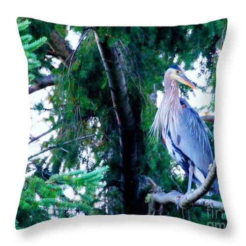 Great Blue Heron Throw Pillow featuring the photograph Heron by Tap On Photo