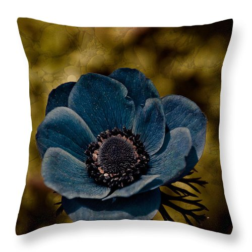 Flower Throw Pillow featuring the photograph Hershey Kiss by Trish Tritz