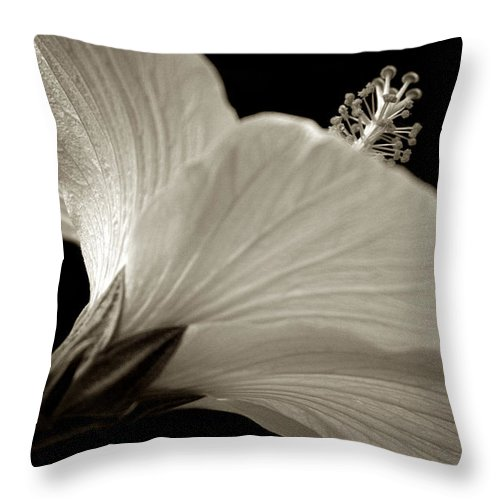 Hibiscus Throw Pillow featuring the photograph Hibiscus by Raffaella Lunelli