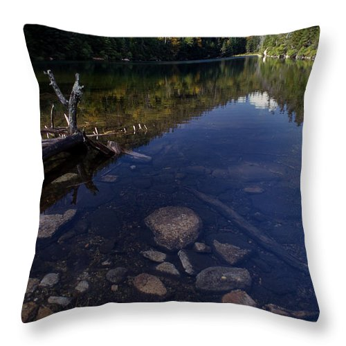 Nh Throw Pillow featuring the photograph Hidden Pond by Skip Willits