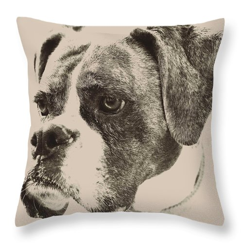 Boxer Throw Pillow featuring the photograph High Key Lexi by Mary Anne Williams