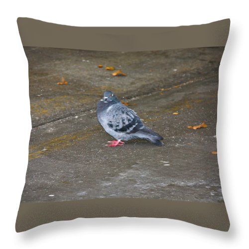The High Line Throw Pillow featuring the photograph High Line Print 33 by Terry Wallace