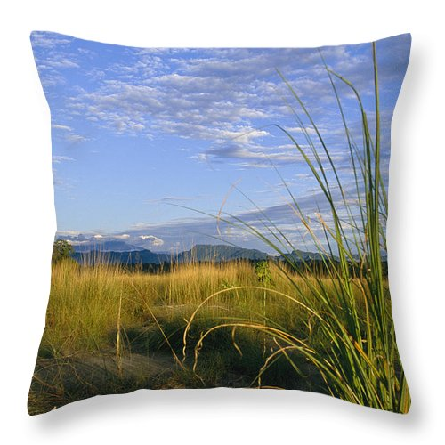 Asia Throw Pillow featuring the photograph Hills Loom In The Distance by Steve Winter