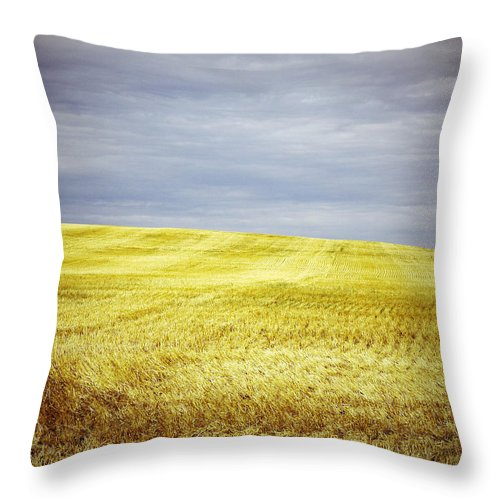 Street Photography Photographs Framed Prints Photographs Framed Prints Throw Pillow featuring the photograph Hills Of Gold by The Artist Project