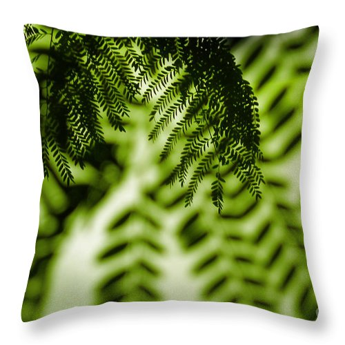 Honey Locust Throw Pillow featuring the photograph Honey Locust Tracery by Judi Bagwell