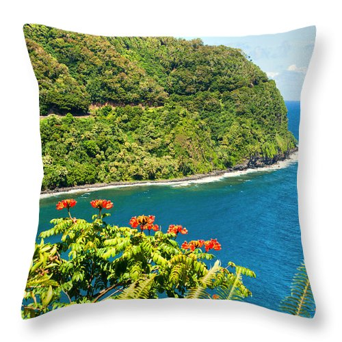 Interior Design Throw Pillow featuring the photograph Honomanu The Hana Highway II by Paulette B Wright