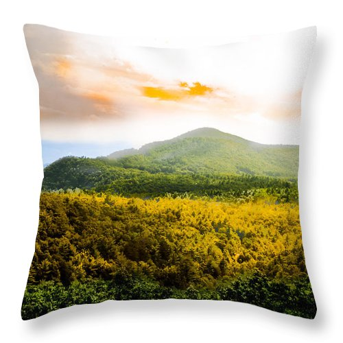 Fall Throw Pillow featuring the photograph Hope Of Fall by Scott Hervieux