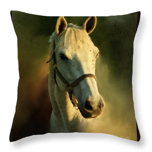 Horse Throw Pillow featuring the painting Horse Head Portriat by George Lai