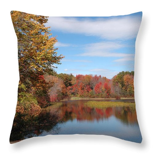 Lake Throw Pillow featuring the photograph Howard's Lake by Mike Nellums