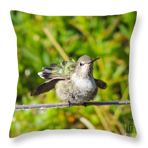 Hummingbird Throw Pillow featuring the digital art Hummer Takes A Shower by L J Oakes