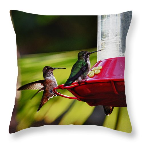 Hummingbirds Throw Pillow featuring the photograph Hummingbirds At The Feeder by Linda Dunn