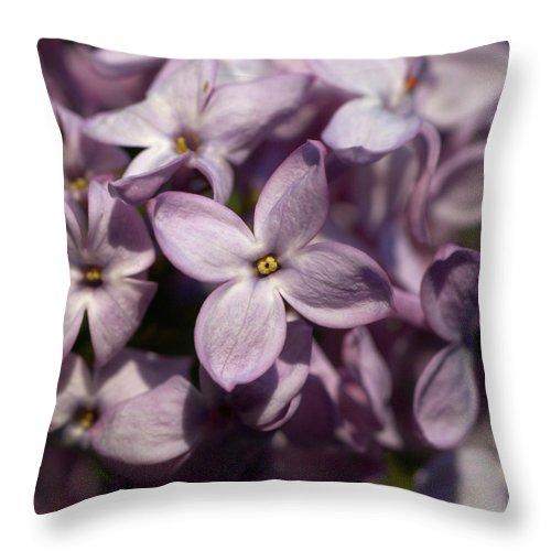 Lehtokukka Throw Pillow featuring the photograph Hungarian Lilac Nr 9 by Jouko Lehto