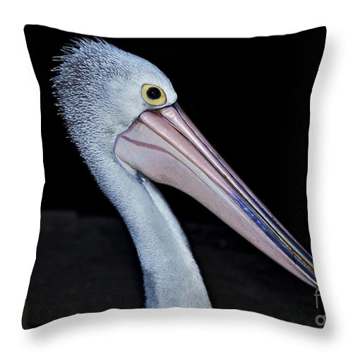 Photography Throw Pillow featuring the photograph Hungry Pelican by Kaye Menner