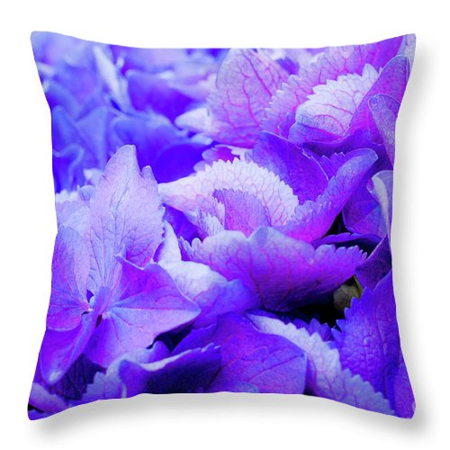 Big Dig Throw Pillow featuring the photograph Hydrangea Petals by Susan Cole Kelly