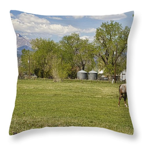 Hygiene Throw Pillow featuring the photograph Hygiene Colorado Boulder County Scenic View by James BO Insogna