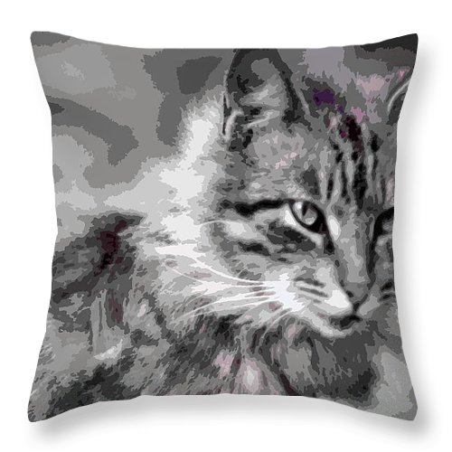 Throw Pillow featuring the photograph I Am Serious by Burney Lieberman