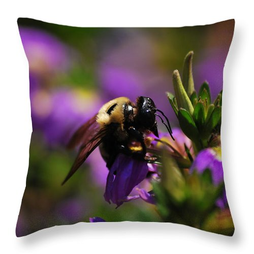 Bee Throw Pillow featuring the photograph I Love My Job by Lori Tambakis