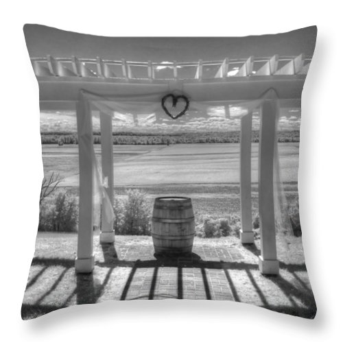 Augusta Missouri Throw Pillow featuring the photograph I Love Wine by Jane Linders