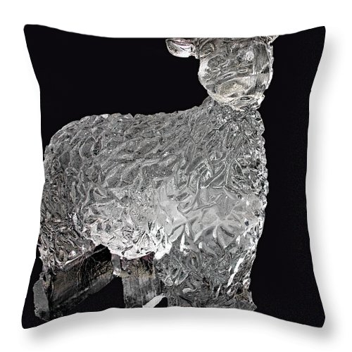 Usa Throw Pillow featuring the photograph Ice Cold Lamb Carved In Ice by LeeAnn McLaneGoetz McLaneGoetzStudioLLCcom