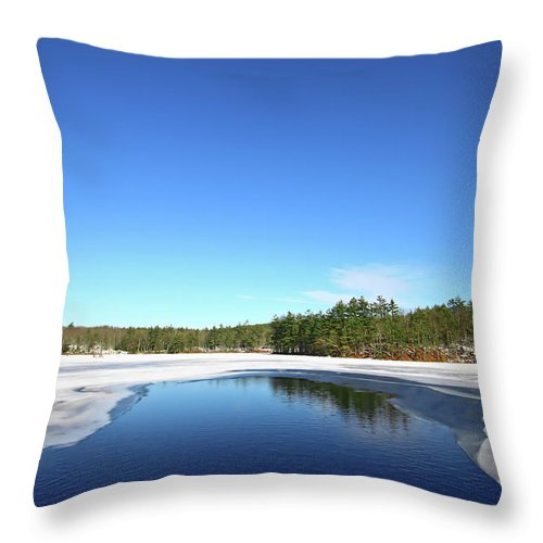 Landscape Throw Pillow featuring the photograph Icing Call by Evelina Kremsdorf