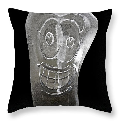Usa Throw Pillow featuring the photograph Icy Apple Smile by LeeAnn McLaneGoetz McLaneGoetzStudioLLCcom