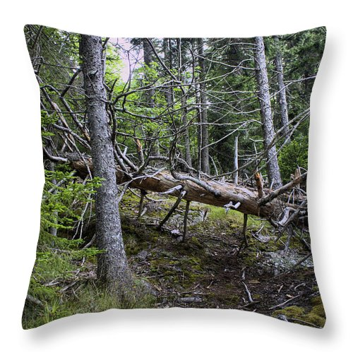 Hdr Throw Pillow featuring the photograph If There's No One There To Hear It by Greg DeBeck