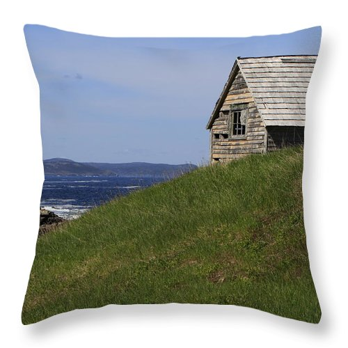 Building Throw Pillow featuring the photograph I'm Still Standing by Gord Patterson
