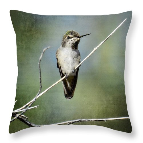 Hummingbird Throw Pillow featuring the photograph I'm Watching You by Saija Lehtonen