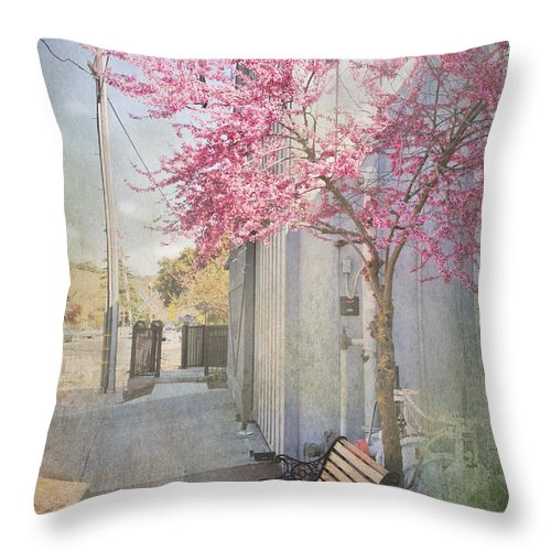 Bench Throw Pillow featuring the photograph In A Small Town by Laurie Search