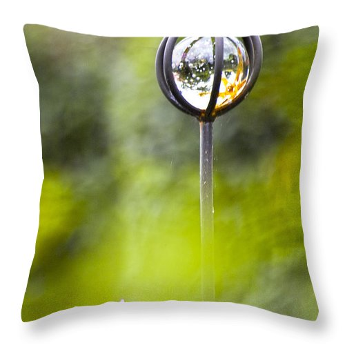 Nature Throw Pillow featuring the photograph In The Garden by Heiko Koehrer-Wagner