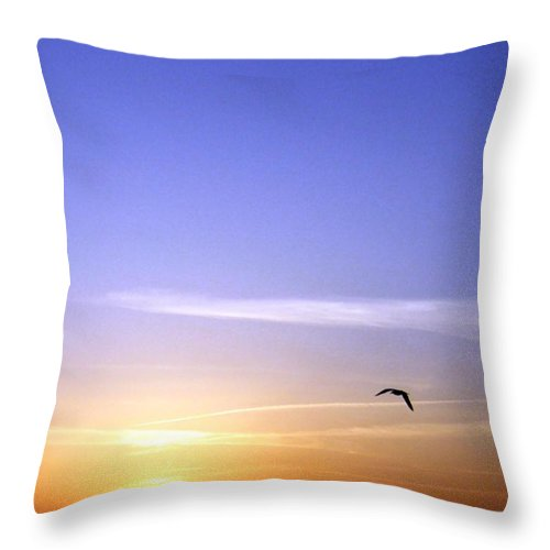 In The Glow Of The Sun Throw Pillow featuring the photograph In The Glow Of The Sun by Will Borden