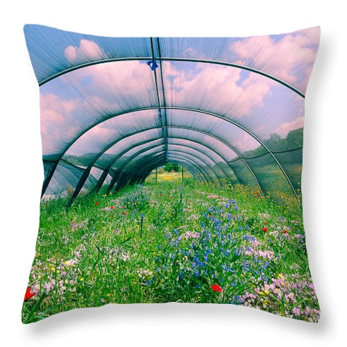 Agriculture Throw Pillow featuring the photograph In The Greenhouse by Michael Goyberg