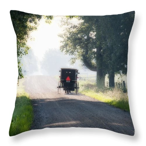 Amish Throw Pillow featuring the photograph In The Heat Of The Day by David Arment