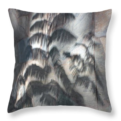Shadow Throw Pillow featuring the photograph In The Shadow Of The Day by Pat Purdy