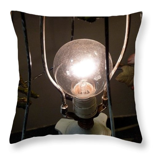 Light Throw Pillow featuring the photograph Incandescent by Newel Hunter