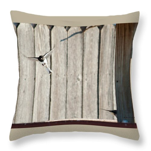 Heron Haven Throw Pillow featuring the photograph Incoming by Edward Peterson