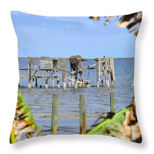 Fine Art Photography Throw Pillow featuring the photograph Indian River Roost by David Lee Thompson