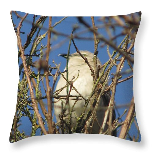 Flower Throw Pillow featuring the photograph Indistinguishable Photography by Tina Marie