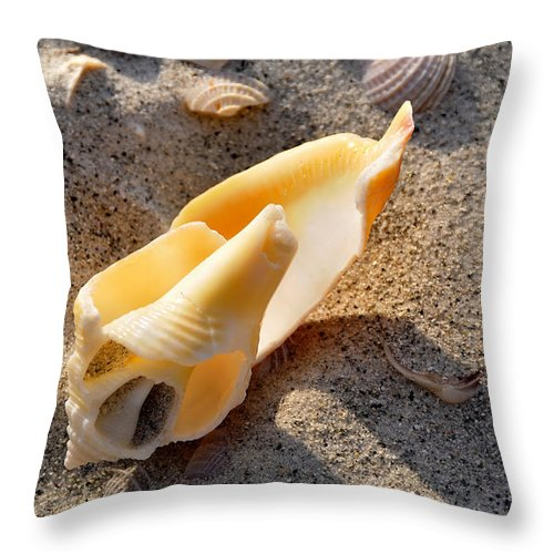 Beach Throw Pillow featuring the photograph Inside Beauty by David Lee Thompson