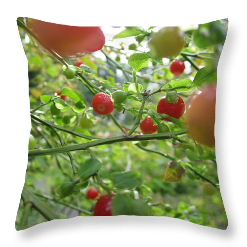 Red Huckleberry Throw Pillow featuring the photograph Inside The Red Huckleberry by Kym Backland
